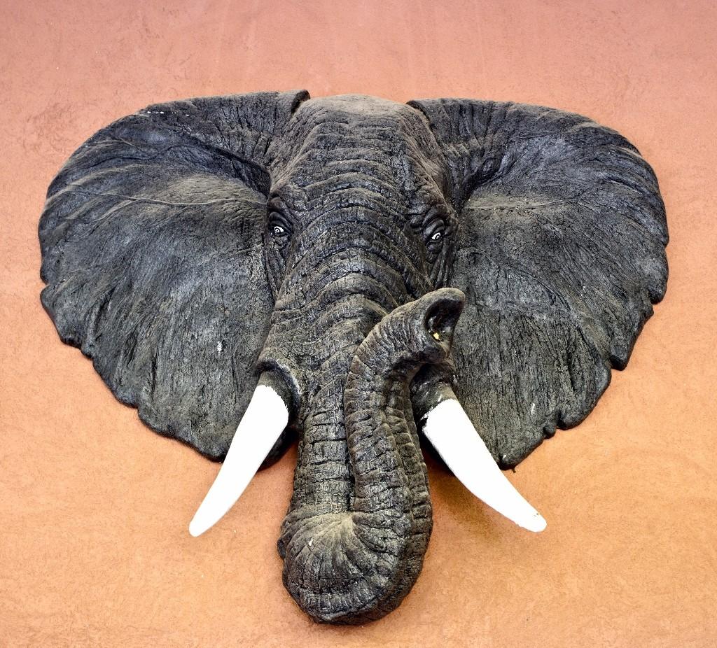 L'éléphant d'Hippocampe