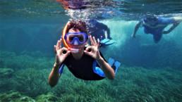 chambre d'hôtes qui propose de la plongée sous marine